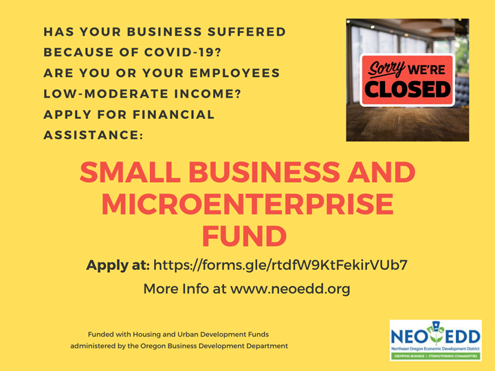 Small Business and Microenterprise Grants