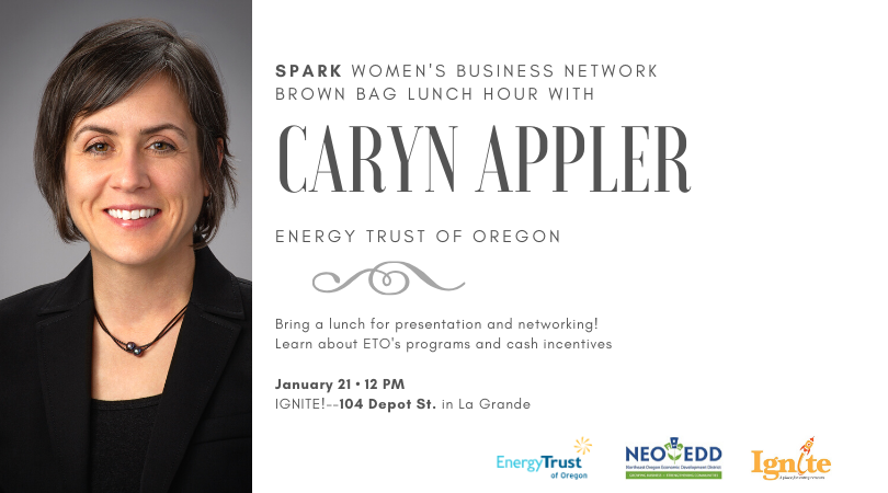 SPARK Women's Business Network Lunch